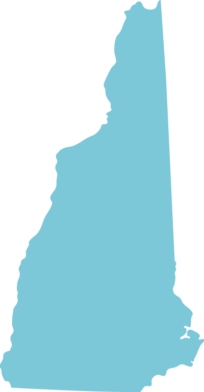 New Hampshire state graphic
