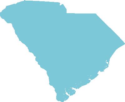 South Carolina state graphic